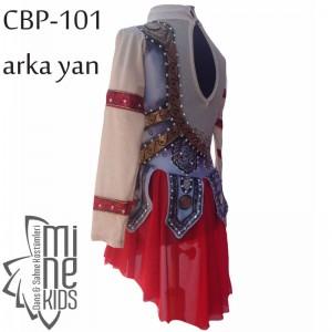 CBP-101-arka-yan
