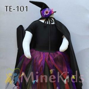 web-TE-101