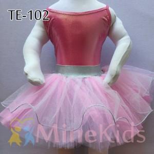 web-TE-102