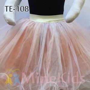 web-TE-108